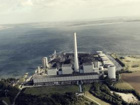 Dong Energy has now converted to pellets, in order to fuel power plant Strudstrup. (Photo: Dong Energy)