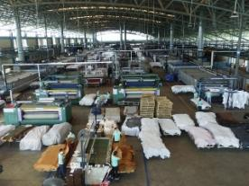 Solar heat is going to be used for preparing the animal skins at PrimeAsia Leather's facility in Ba Ria-Vung Tau and evaporating the factory's waste water. (Photo: PrimeAsia Leather Company)