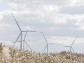 Siemens Gamesa will supply 22 SWT-3.4-108 for two wind farms in Hokkaido. (Photo: Siemens Gamesa)