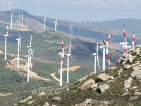 When it comes to the development of renewable energy Morocco has left its North African neighbours far behind. The planned wind farm project in Tarfaya will have a final capacity of 300 MW. (Photo: Office National de L'Electricite)