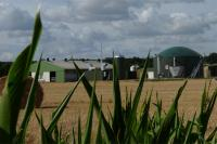 France is making biogas plants such as the one in Saint Sigismond more lucrative. (Photo: Weltec Biopower)