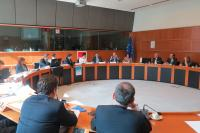 MEP Theresa Griffin (sixth from left) hosted SolarPower Europe's 'Ahead of the Pack' study launch. Representatives from the European Commission, power sector and consumer organisations were also present. (Photo: Solar Power Europe)